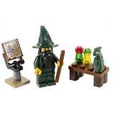 7955 LEGO Kingdoms Tovenaar_