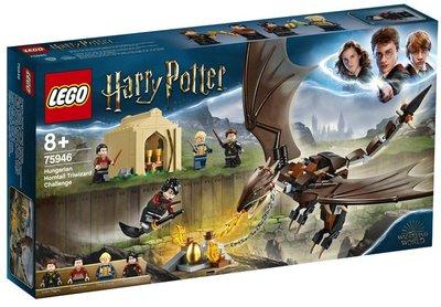 75946 LEGO Harry Potter Hongaarse Hoornstaart Toverschool Toernooi