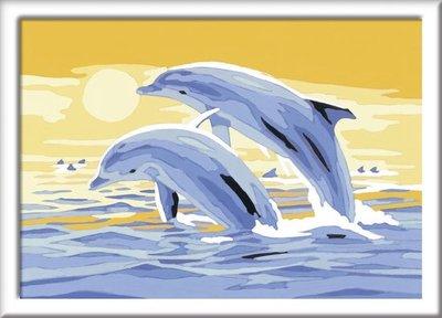 280537 Ravensburger Schilderen op nummer Springende dolfijnen
