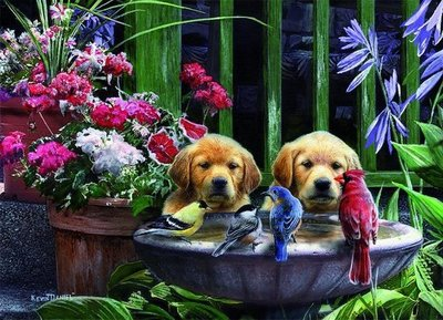 05668 King Puzzel Puppies Drinking Water 1000 Stukjes