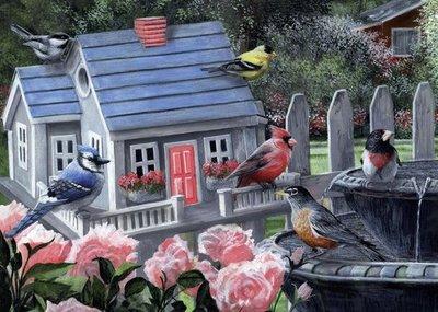 05390 King Puzzel Kleurrijke Vogels 1000 Stukjes