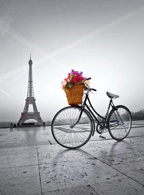 35014 Clementoni Puzzel Romantic promenade in Paris 500 Stukjes